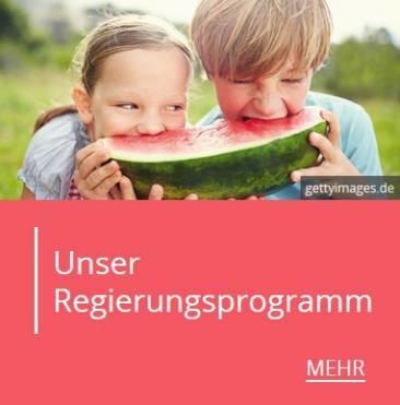 SPD: Unser Regierungsprogramm